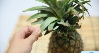 Ananas Nasıl Soyulur & Kesilir?